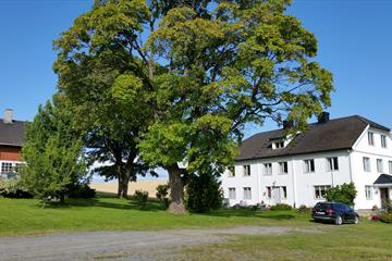 Faarlund, B&B, bed and breakfast, Toten, Mjøsa, Overnatting, bonderomantisk